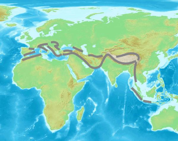 Тихоокеанский сейсмический пояс проходит по