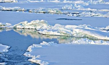 Южный или антарктический океан