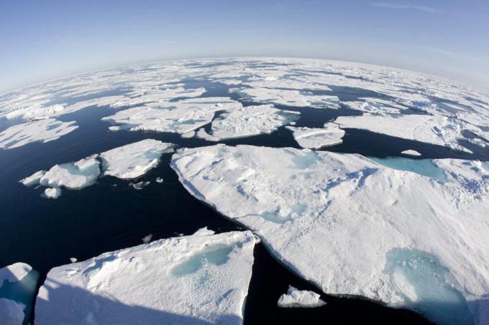 Полярный климатический пояс